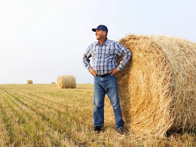 Пенсия работникам сельского хозяйства